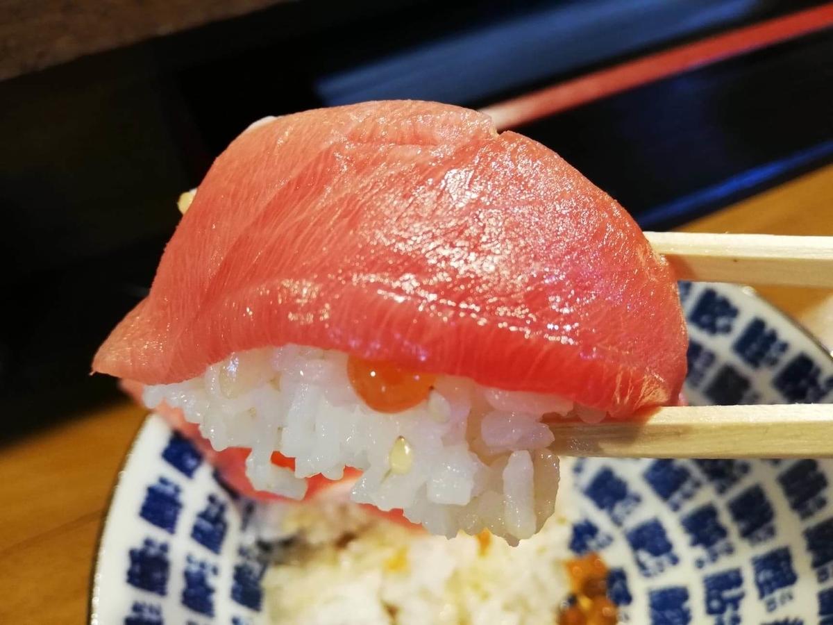 立川『モンロー』の天然本まぐろ中とろマシマシいくらマシマシ海鮮丼のまぐろを箸で掴んでいる写真