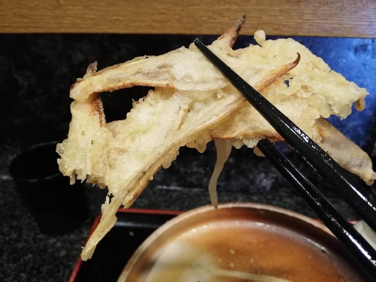 高田馬場『大地のうどん』のごぼうおろしぶっかけのごぼう天ぷらを、箸で掴んでいる写真