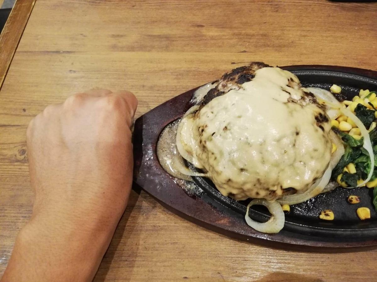 武蔵浦和『ヒーローズ』のハンバーグステーキと拳のサイズ比較写真