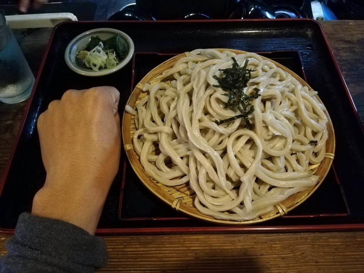 新座(保谷駅)『うどんや藤』の肉うどんと拳のサイズ比較写真