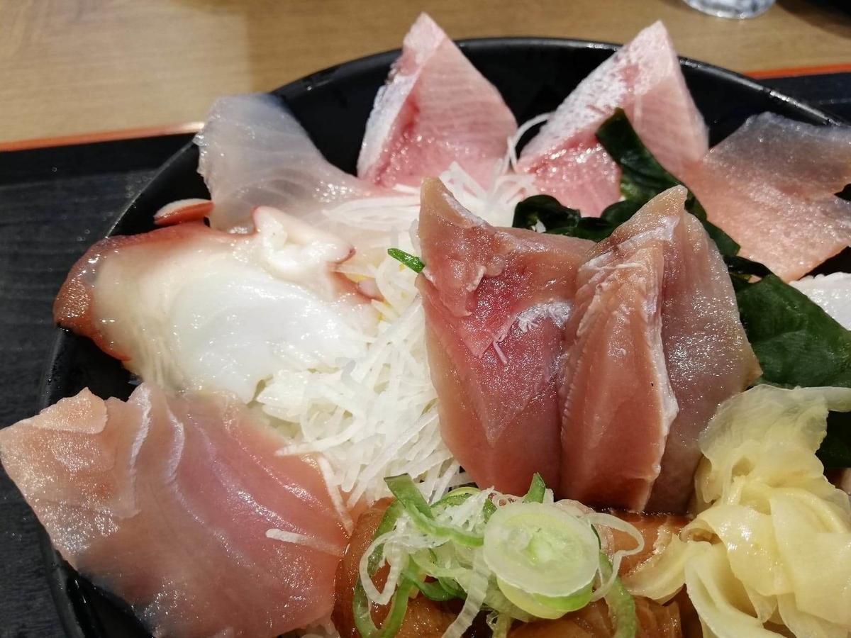 金沢市中央卸売市場『魚がし食堂』の日替わり得盛りてんこ丼のアップ写真①