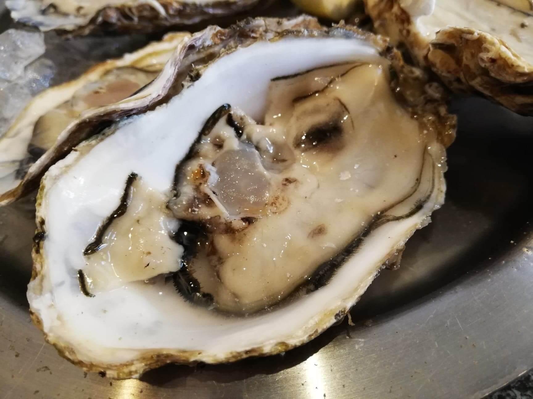 広島県宮島『牡蠣屋』の生牡蠣のアップ写真