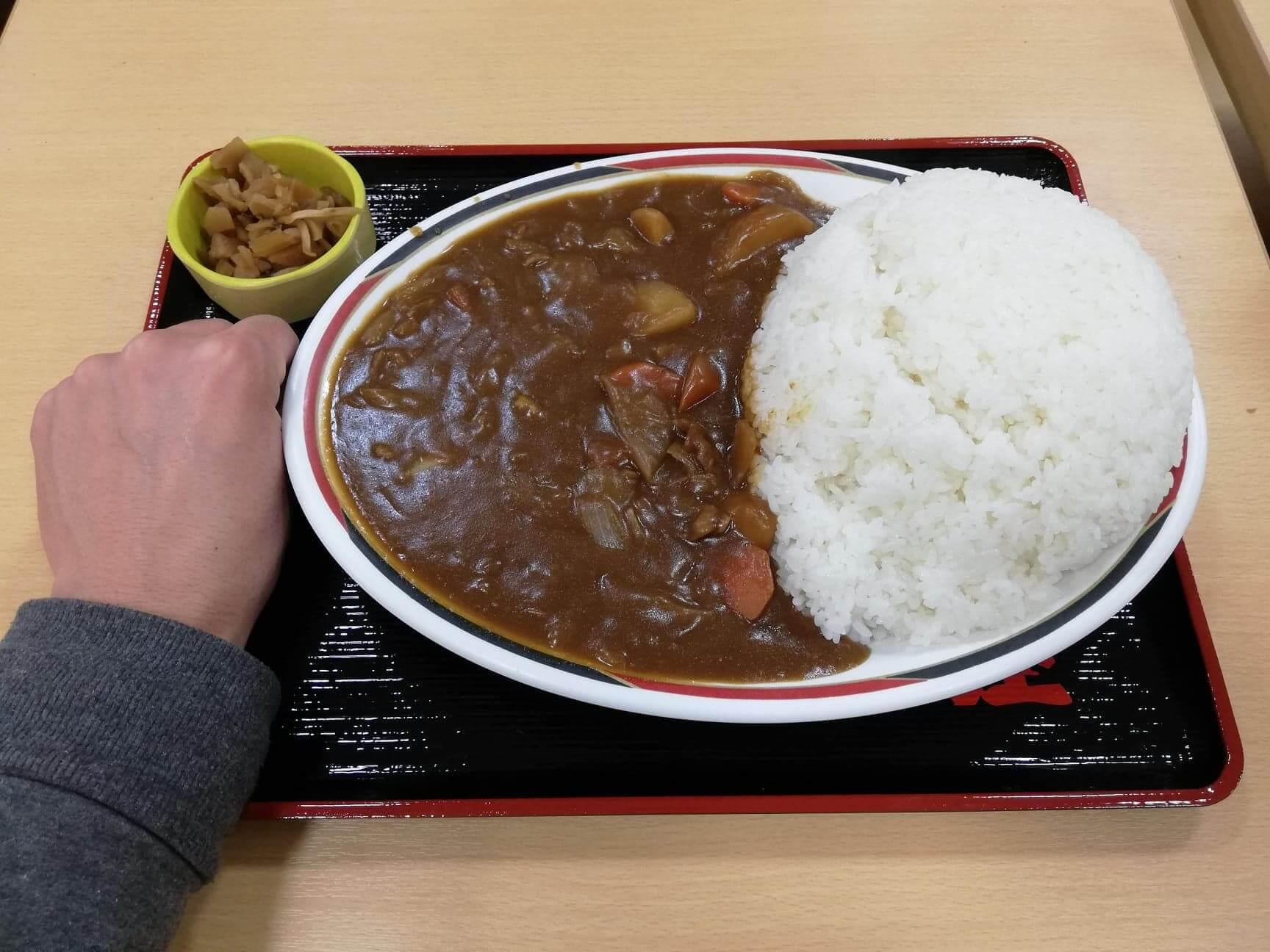 宮城県仙台市『大衆食堂半田屋東口BiVi店』の1キロカレーと拳のサイズ比較写真